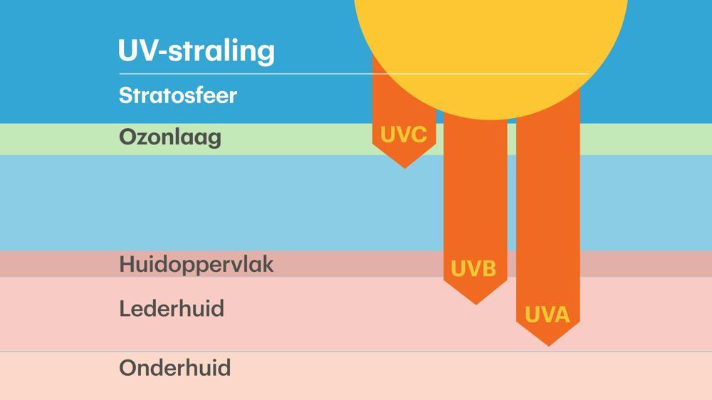 UV-A, UV-B, UV-C stralen: hoe diep dringen ze door in de huid?